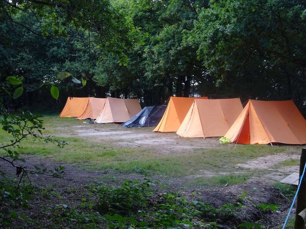 Scout Summer Camp, 2016 352