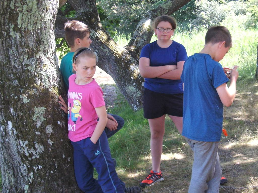 Scout Summer Camp, 2016 464