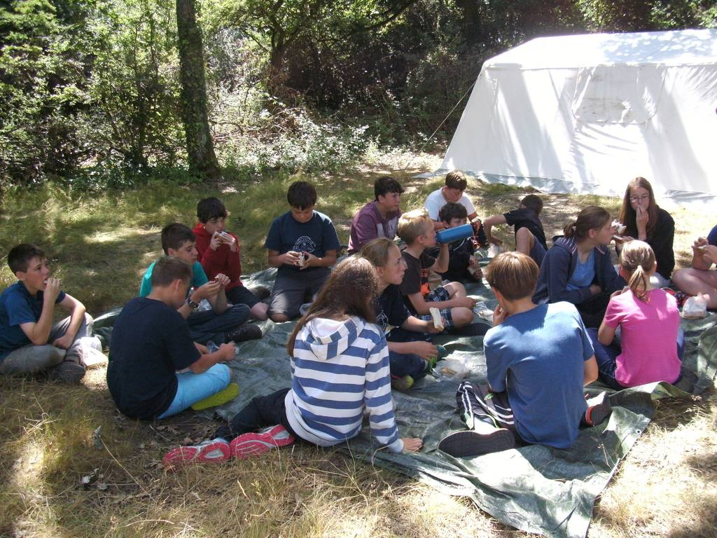 Scout Summer Camp, 2016 465